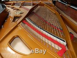 Petrof P2 Semi Concert Grand Piano Made In 2004. 5 Year Guarantee