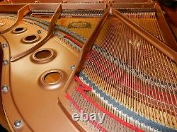 Yamaha Gc1 Silent Grand Piano Around 10 Years Old 5 Year Guarantee. 0% Finance