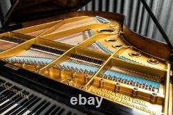 Bechstein Model V Piano À Queue Fabriqué Vers 1900. Garantie De 5 Ans
