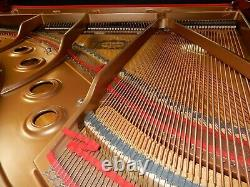 Yamaha Grand Piano Gb1 Bébé. Juste 1 Ans, 5 Ans De Garantie